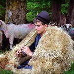 Cioban momârlan