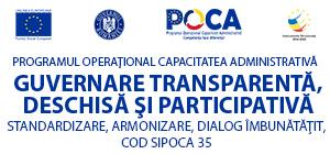 Guvernare participativă